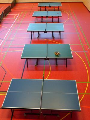 Fünf Tischtennisplatten