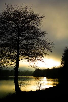 Lake in the Evening II