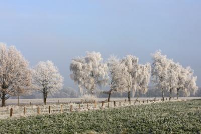 ein klarer wintertag 2