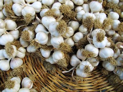 Knoblauch auf dem Markt