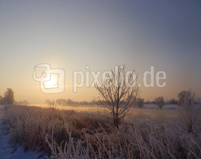 Bei minus 16 Grad dampft die Elbe