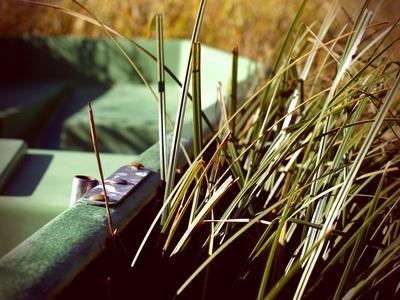 Boot im Gras