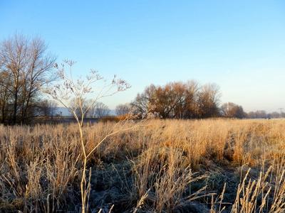 Frostige Elblandschaft