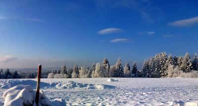 Wintermorgen - klirrend kalt