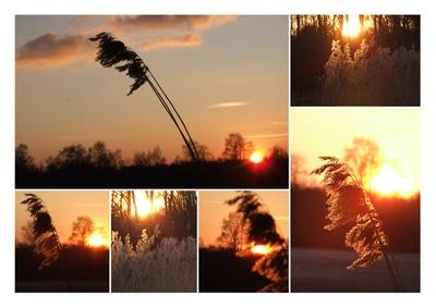 Glühender Winterabend