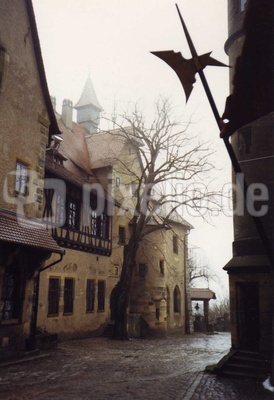 Burg Altenburg im Winternebel