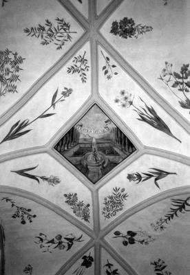 Herbarium an der Kirchendecke