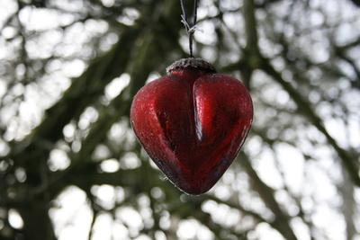 Eisiges Herz
