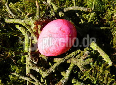 Osternest in pink