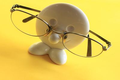 der brillenträger