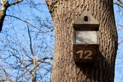 Vogelhäuschen Nr. 12