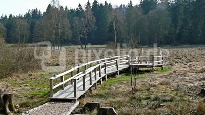 Moorerlebnis Natur- und Kulturpfad im Solling (Niedersachsen)
