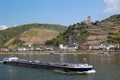 Burg Gutenfels am Rhein #2