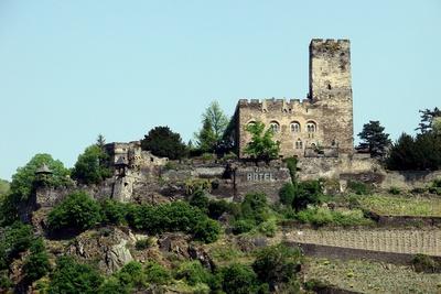 Burg Gutenfels am Rhein #4