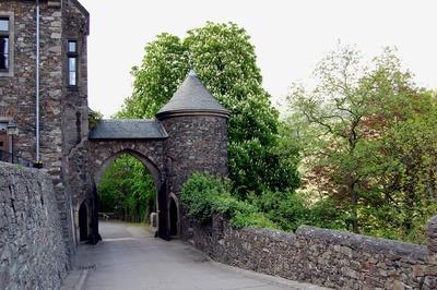Burg Reichenstein (Falkenburg) #4