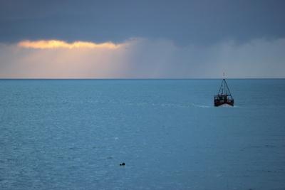 In den heimatlichen Hafen