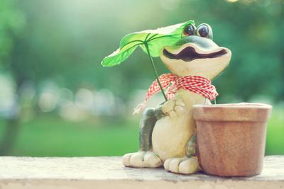 Küss den Frosch ;-)
