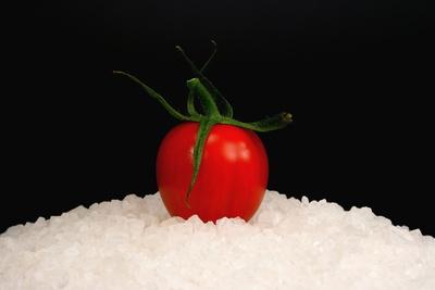 Tomaten 73
