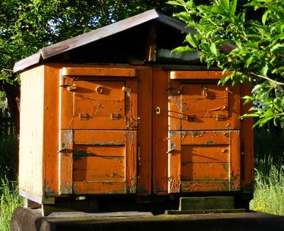 Bienenhaus - Rückseite