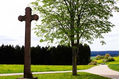 Maiwanderung am Steinernen Kreuz