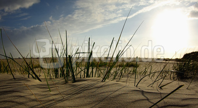 Nordsee Panorama 3