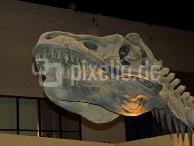 Sirindhorn Museum, Kalasin Thailand