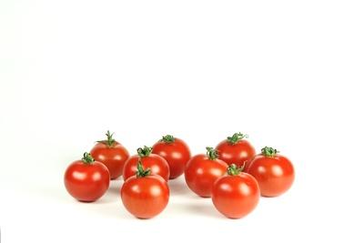 Tomaten 78