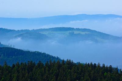 Fernsicht im Schwarzwald 3