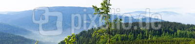 Schwarzwald-Panorama 1