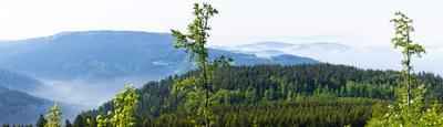 Schwarzwald-Panorama 2