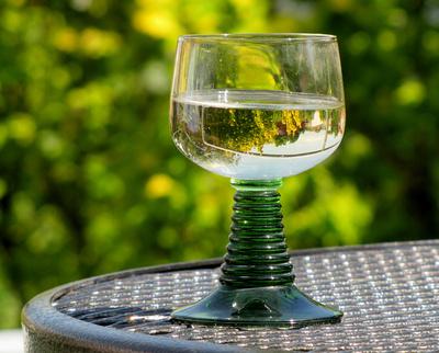 Glas Wein im Garten