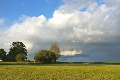 Wolken über dem Ackerland