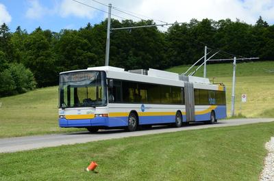 Gelenktrolleybus