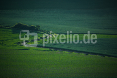 Weserbergland grün