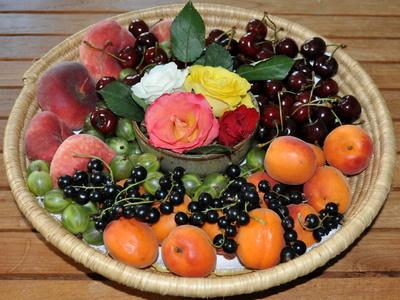 Blumen und Früchte 2