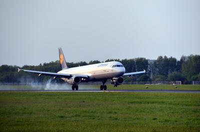 Lufthansa down