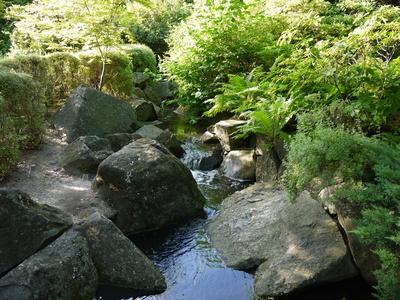 Bach im japanischen Garten - Posen