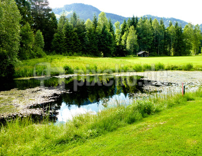 Biotop mit Teich, Hütte und Allgäubergen