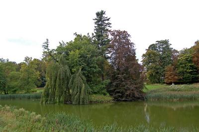 Schlosspark zu Putbus auf Rügen