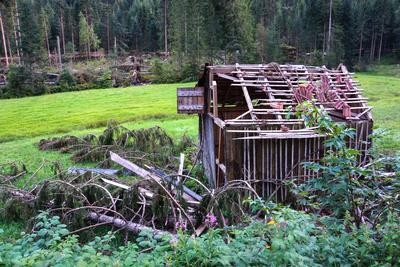 Orkanschäden im Schwarzwald