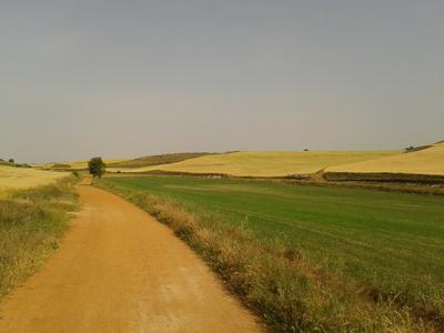 Pilgerweg III