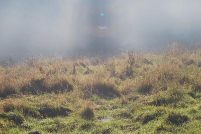 aufsteigende Nebel
