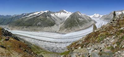 Aletschgletscher - Schmelzendes Paradies