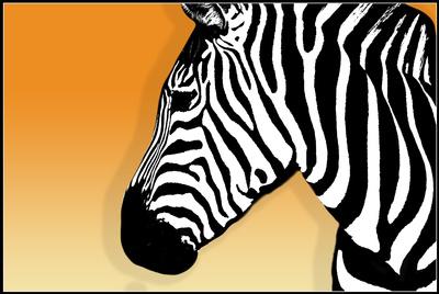 Pop-Art Zebra