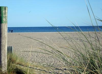 Fehmarn Strand