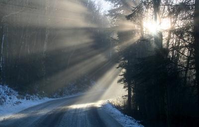 Lichtstrahlen im Nebel