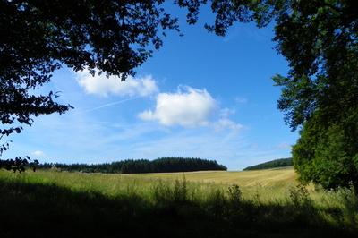 Eifelland