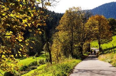 Letzte Wandertage im Herbst