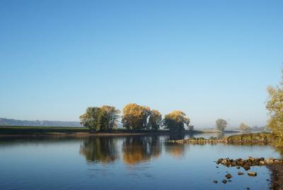 Herbstmorgen an der Elbe