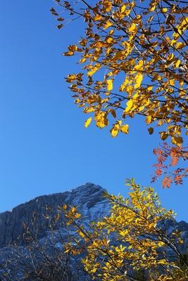 Blick auf die Alpspitze 05
